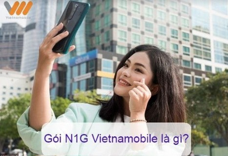 gói N1g Vietnamobile